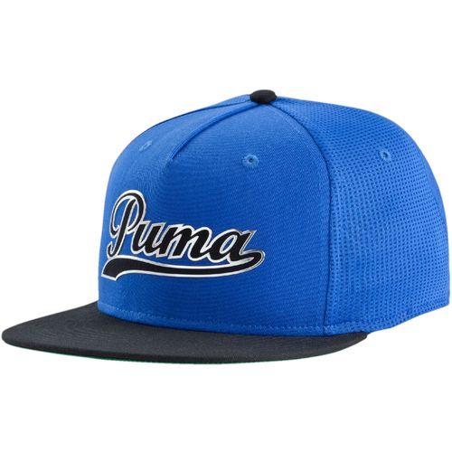 Puma Men's Script Hat